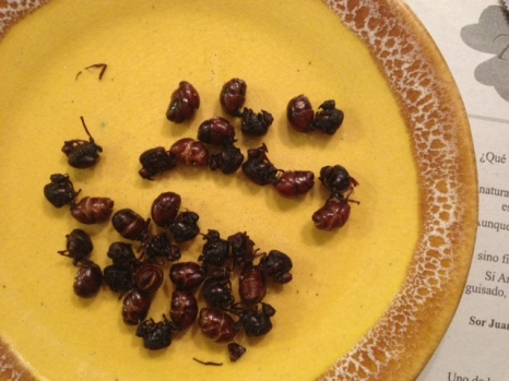 FAT-BOTTOMED ANTS, Y'ALL.